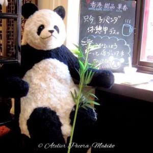 超BIGサイズパンダ「Pecora」in果果