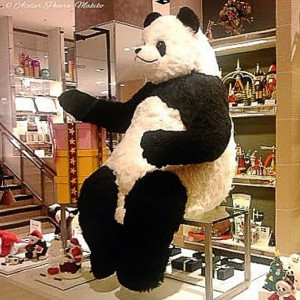 超BIGサイズパンダ「Pecora」 銀座三越