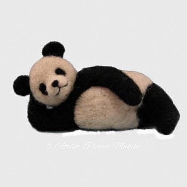 ごろ寝パンダ