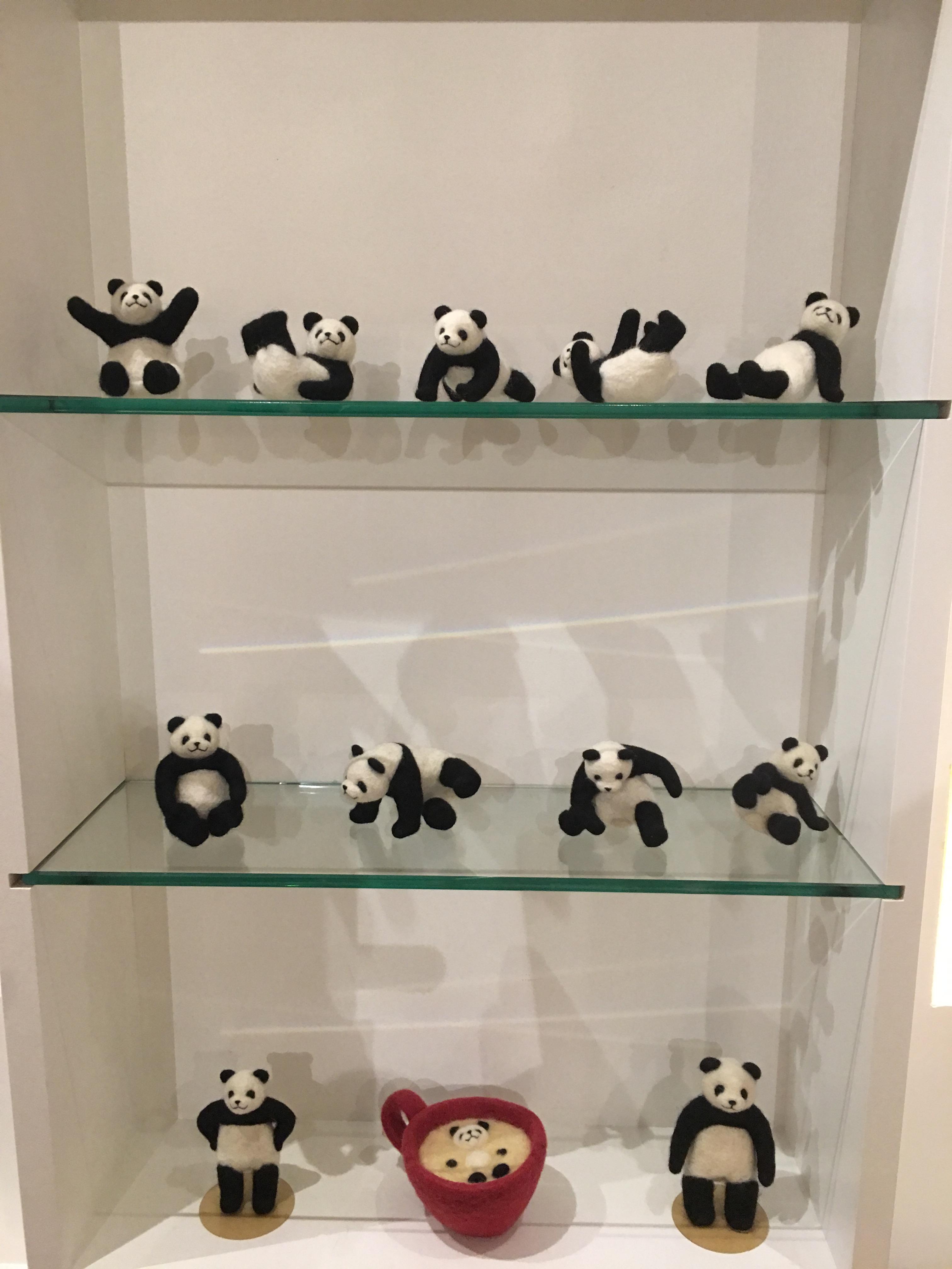 色々なポーズの癒しパンダ
